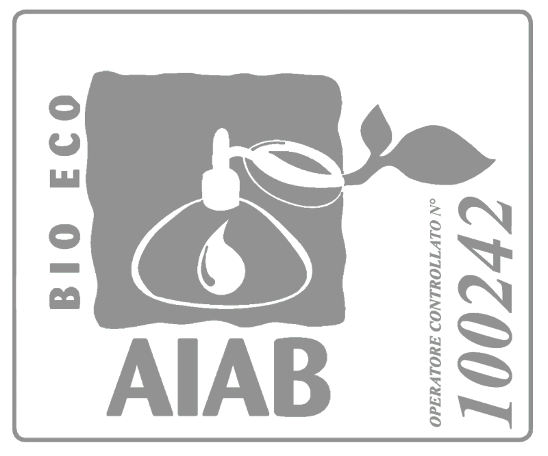 BIG ECO AIAB Operatore controllato no.100242